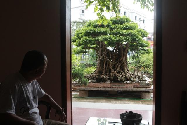 """""""Báu vật ẩn mình"""" có tuổi đời 500 năm ở Hà Nội, trả 100 cây vàng không bán - 1"""