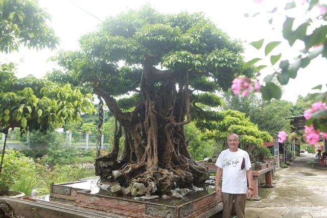 """""""Báu vật ẩn mình"""" có tuổi đời 500 năm ở Hà Nội, trả 100 cây vàng không bán - 10"""