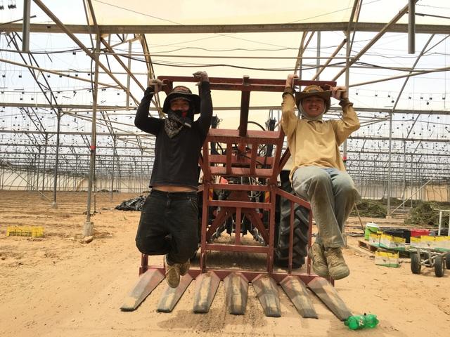 Chàng kiến trúc sư trẻ kể chuyện làm nông ở Israel - 3