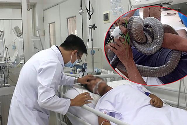Gia cảnh khốn khó của người ôm rắn hổ mang chúa vào bệnh viện cấp cứu - 2