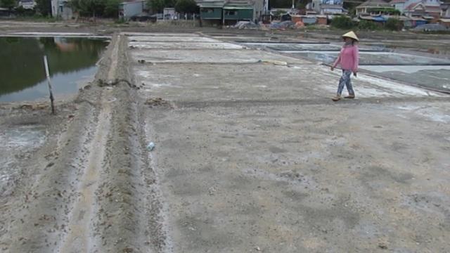 Quảng Ngãi:  Mặn chát nghề muối ở Sa Huỳnh - 1
