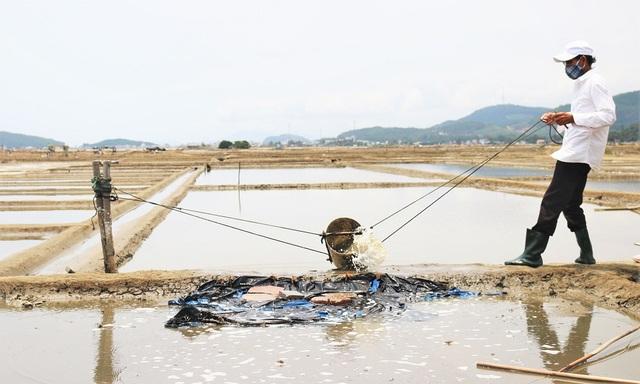 Quảng Ngãi:  Mặn chát nghề muối ở Sa Huỳnh - 2