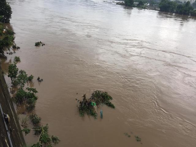 Cận cảnh nước lũ dâng cao ở nơi con sông Hồng chảy vào đất Việt - 4