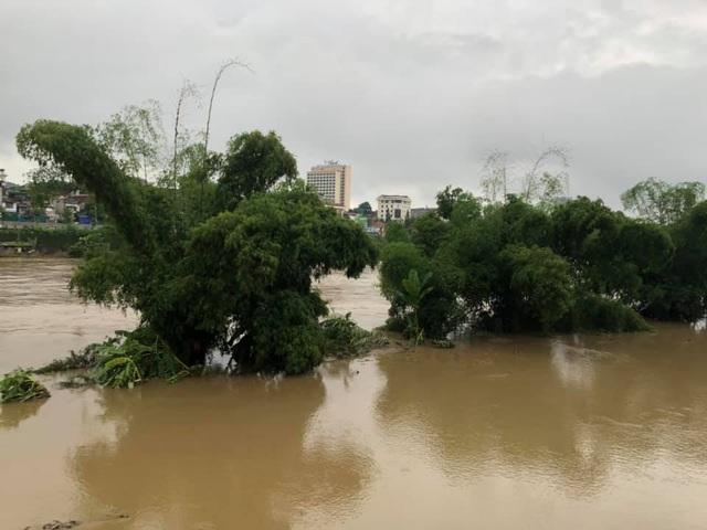 Cận cảnh nước lũ dâng cao ở nơi con sông Hồng chảy vào đất Việt - 6