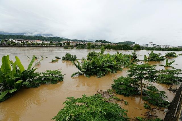 Cận cảnh nước lũ dâng cao ở nơi con sông Hồng chảy vào đất Việt - 8