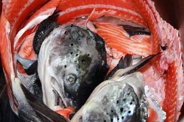 Chỉ 10.000 đồng/kg, chế đủ món với hải sản nhà giàu - 3