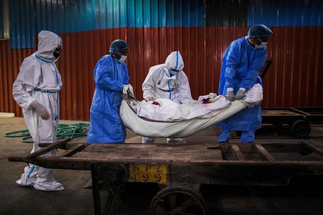 Hơn 800.000 người chết vì Covid-19, thế giới vẫn căng mình ứng phó đại dịch - 1