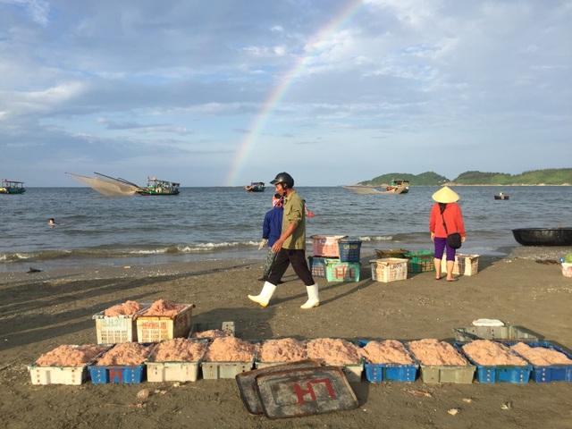Hà Tĩnh: Ngư dân trúng mùa ruốc biển - 6