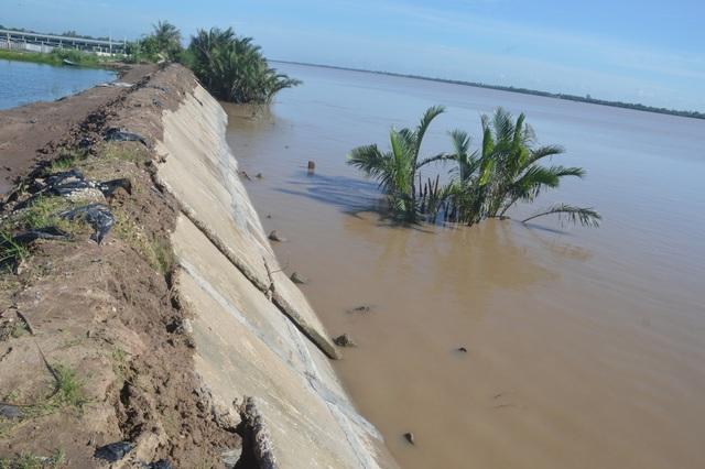 Người dân hoang mang tố thủ phạm gây sạt lở nghiêm trọng hai bờ sông Hậu - 10