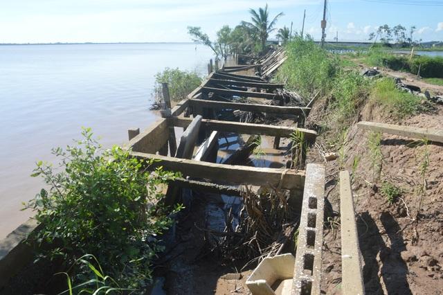 Người dân hoang mang tố thủ phạm gây sạt lở nghiêm trọng hai bờ sông Hậu - 3