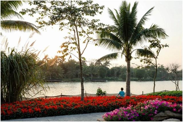 Căn hộ 45m2 ở Hà Nội nằm sát hồ Thiên Nga lãng mạn như trời Âu - 14