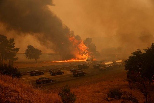 650 đám cháy rừng càn quét bang California, 7 người chết - 16