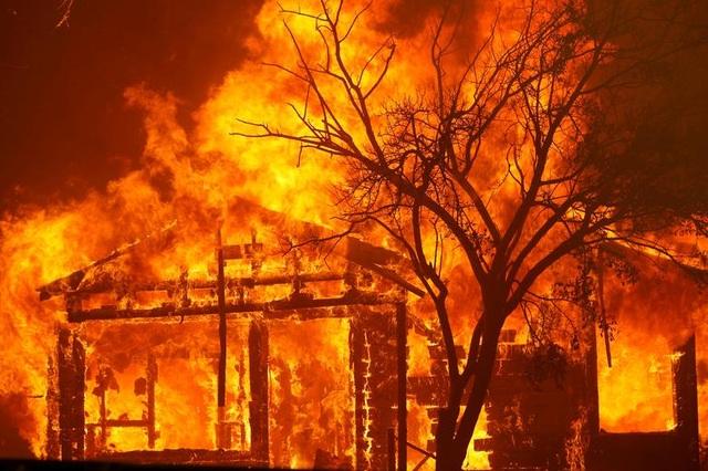 650 đám cháy rừng càn quét bang California, 7 người chết - 3