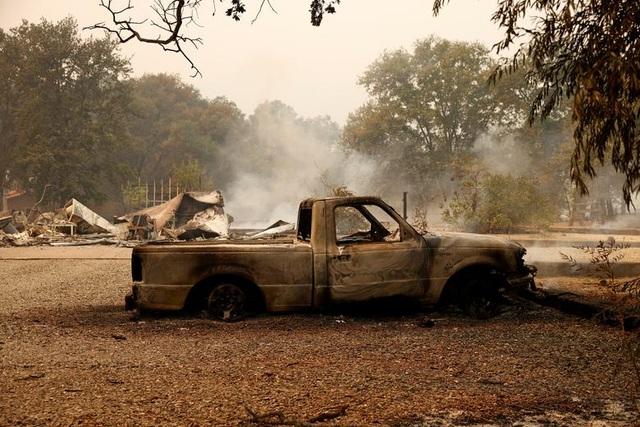 650 đám cháy rừng càn quét bang California, 7 người chết - 9