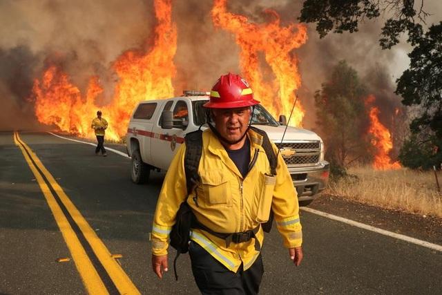 650 đám cháy rừng càn quét bang California, 7 người chết - 4