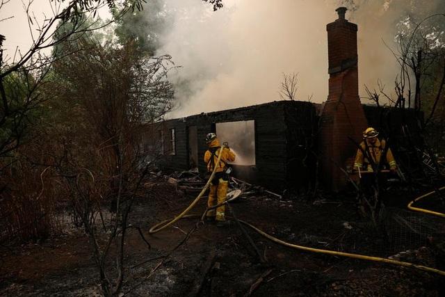 650 đám cháy rừng càn quét bang California, 7 người chết - 8