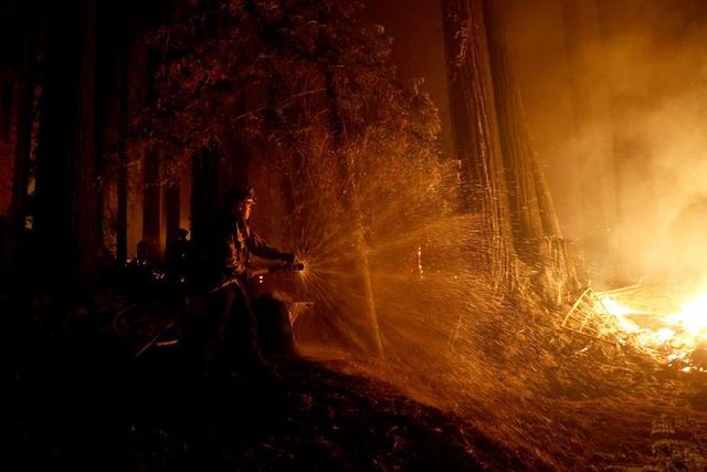 650 đám cháy rừng càn quét bang California, 7 người chết - 20