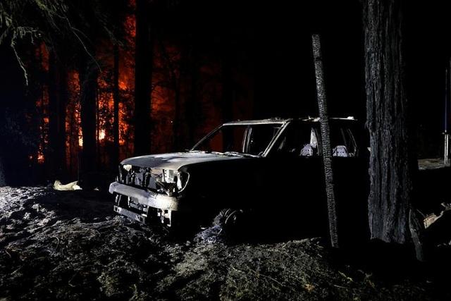 650 đám cháy rừng càn quét bang California, 7 người chết - 19