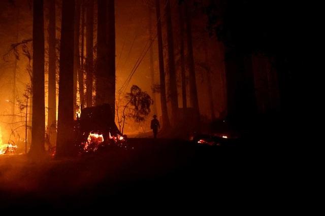 650 đám cháy rừng càn quét bang California, 7 người chết - 7