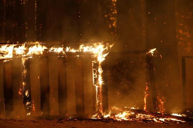 650 đám cháy rừng càn quét bang California, 7 người chết - 6
