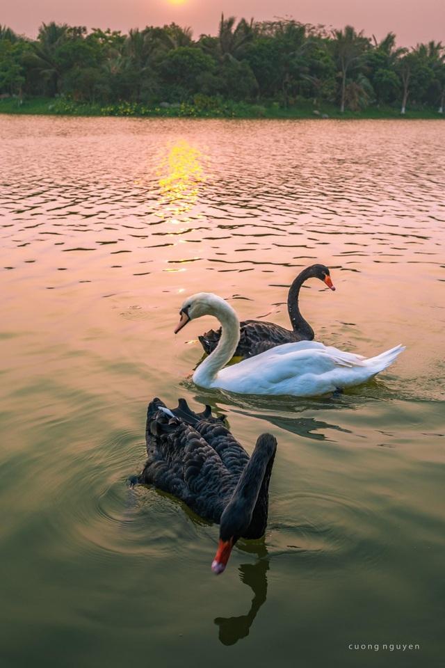 Căn hộ 45m2 ở Hà Nội nằm sát hồ Thiên Nga lãng mạn như trời Âu - 13