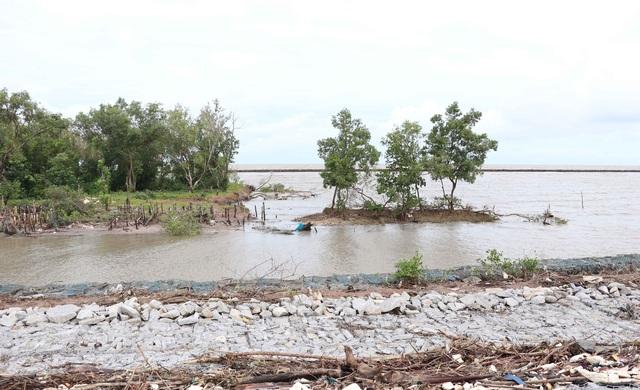 Hơn 3km đê biển Tây sạt lở, Cà Mau ban bố tình huống khẩn cấp - 1