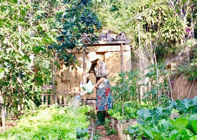 Rời Sài Gòn hoa lệ, chàng trai trẻ tới Đà Lạt dựng nhà, chăm cún, trồng hoa - 3
