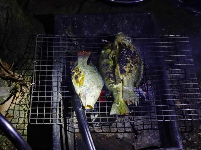 Về hồ Trị An trốn nóng Sài Gòn - 10