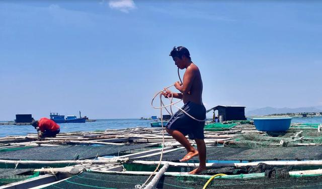 Về Ninh Thuận ra làng bè Đông Hải xem tắm cá - 4