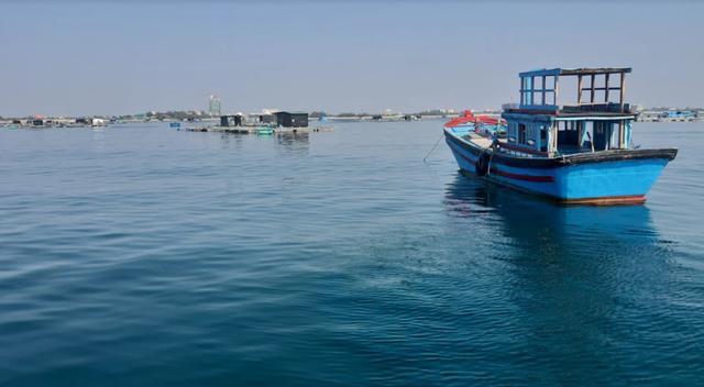 Về Ninh Thuận ra làng bè Đông Hải xem tắm cá - 5