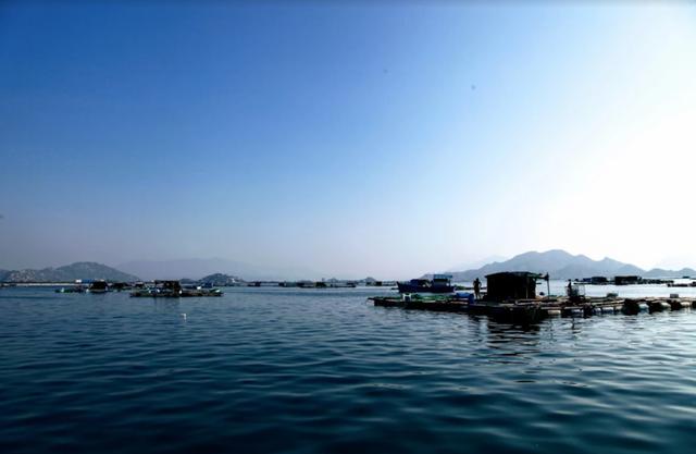 Về Ninh Thuận ra làng bè Đông Hải xem tắm cá - 7