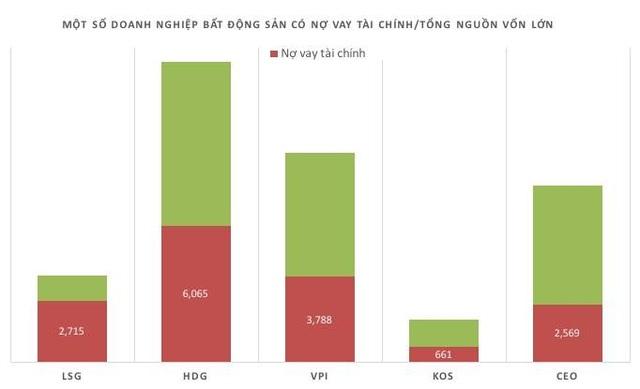 Điểm mặt những đại gia bất động sản có khối nợ lớn - 2