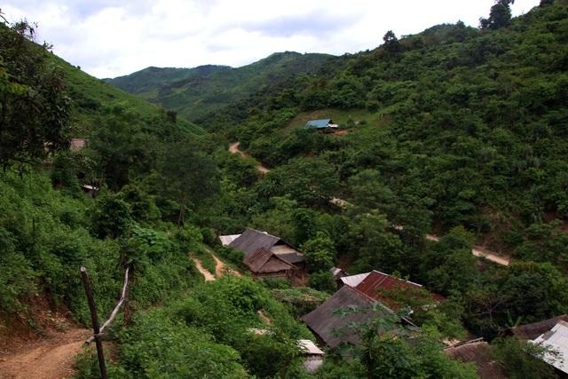 Trên 2 vạn người dân ở huyện biên giới Nghệ An cần gạo cứu đói - 1