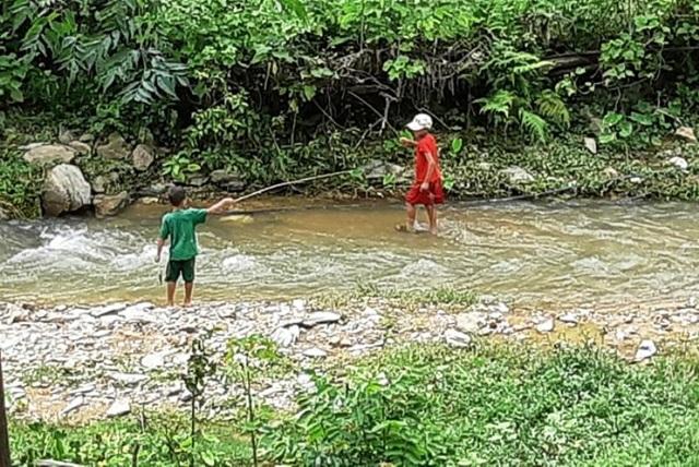 Trên 2 vạn người dân ở huyện biên giới Nghệ An cần gạo cứu đói - 9