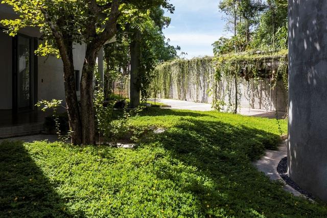 """Nhà vườn bình yên ở Nghệ An khiến """"ai cũng muốn bỏ phố về quê"""" - 10"""