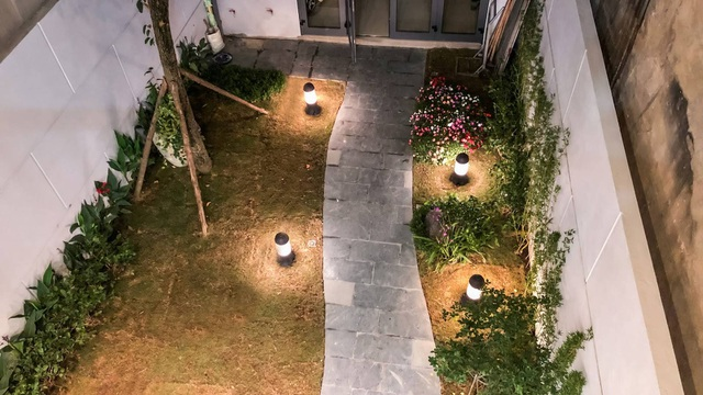 Gia đình ở Hà Nội trồng cả vườn cây xanh đẹp hiếm có trong căn nhà phố - 5