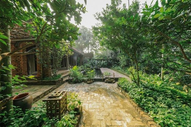 Chán biệt thự nhà phố, nhà giàu Việt về quê làm nhà mái rạ giản dị mà đẹp - 11