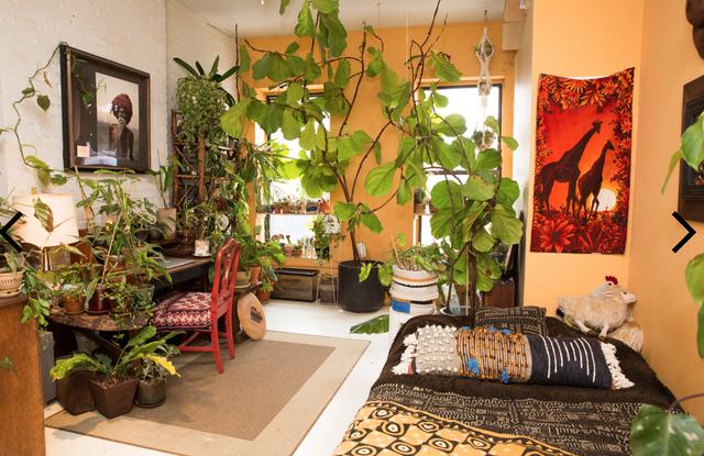 """Căn nhà gây """"sốt"""" mạng vì trồng 700 cây xanh như rừng nhiệt đới - 5"""