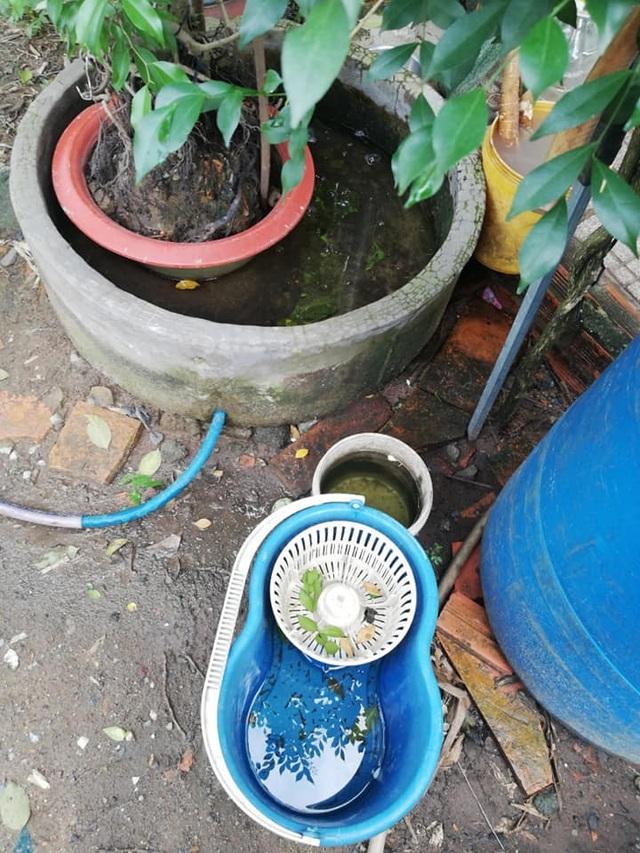 TP HCM: Thiếu nữ 16 tuổi tử vong vì sốt xuất huyết  - 2