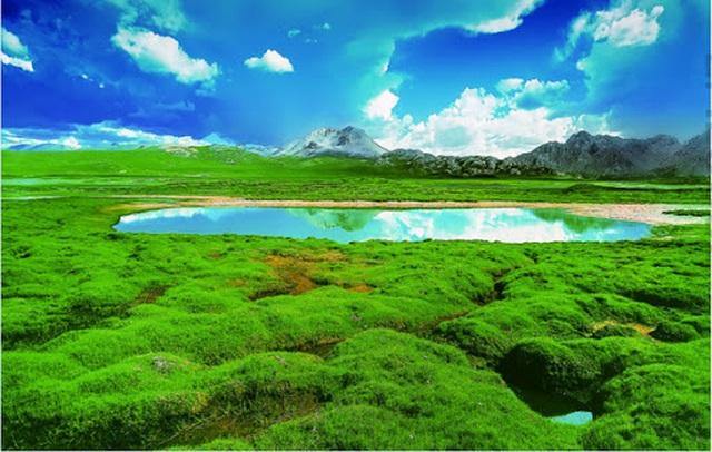 Trung Quốc sắp xây xong công viên 123.000 km2 trên mái nhà của thế giới - 3