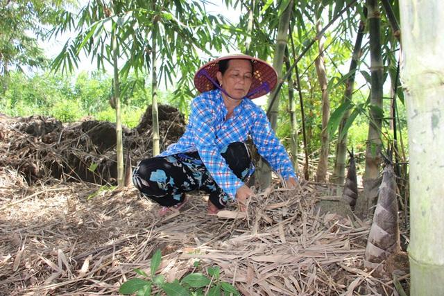 Thu lãi trăm triệu đồng nhờ trồng loại cây bán không bỏ thứ gì - 2