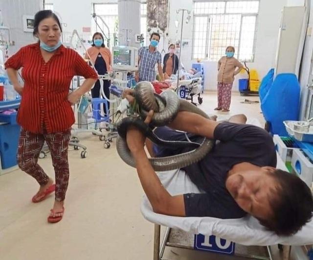 Kỳ tích cứu sống bệnh nhân ôm rắn hổ chúa đi cấp cứu - 1