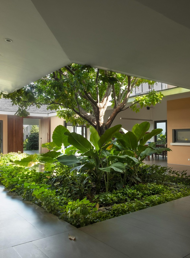 """""""Ốc đảo xanh"""" ẩn mình giữa 8 khối nhà trong căn biệt thự 1000m2 ở Sài Gòn - 3"""