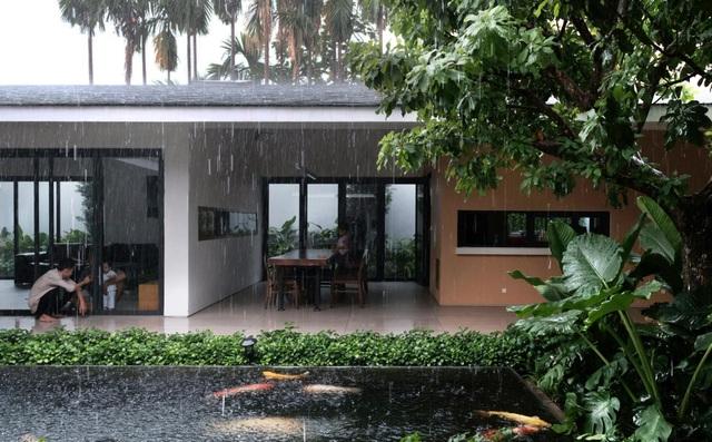 """""""Ốc đảo xanh"""" ẩn mình giữa 8 khối nhà trong căn biệt thự 1000m2 ở Sài Gòn - 5"""
