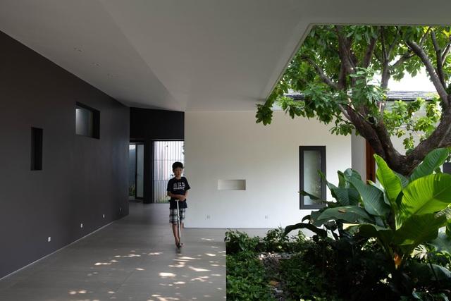 """""""Ốc đảo xanh"""" ẩn mình giữa 8 khối nhà trong căn biệt thự 1000m2 ở Sài Gòn - 6"""