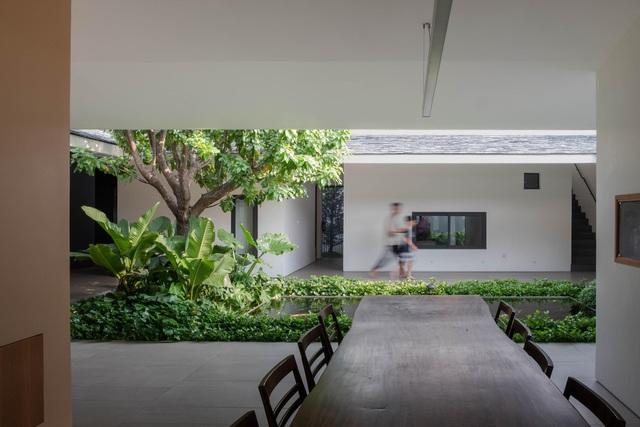 """""""Ốc đảo xanh"""" ẩn mình giữa 8 khối nhà trong căn biệt thự 1000m2 ở Sài Gòn - 7"""