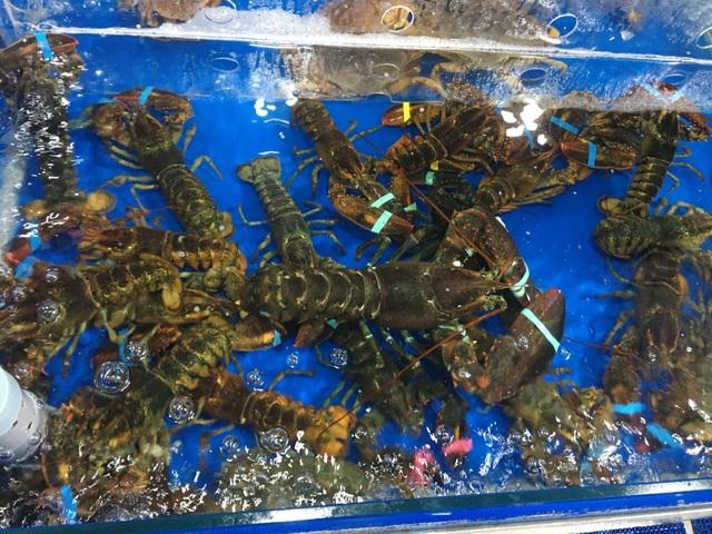 """TPHCM: Chuỗi hải sản tươi sống """"mọc như nấm sau mưa"""", dù lỗ cũng cố cầm cự - 2"""