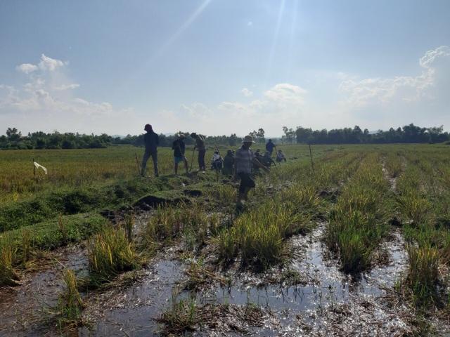 Diễn tiến phức tạp vụ hàng chục hộ dân bị chiếm dụng đất nông nghiệp - 1