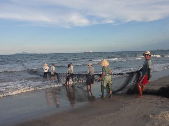 """Những """"mẻ lưới niềm vui"""" của ngư dân Đà Nẵng sau nới lỏng giãn cách xã hội - 1"""