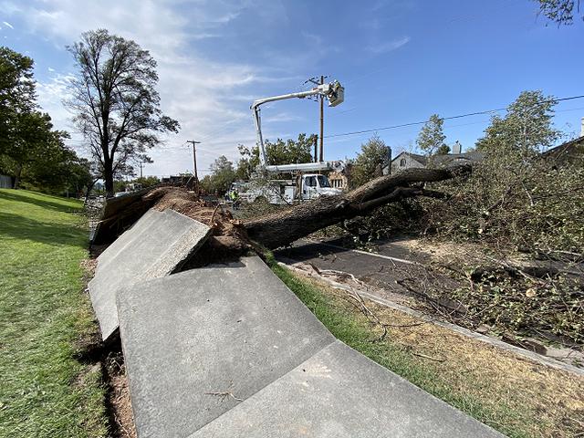 Gió mạnh thổi 45 xe tải lật nhào trên đường cao tốc Mỹ - 5